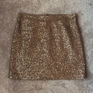 NWOT LOFT Sequin Skirt